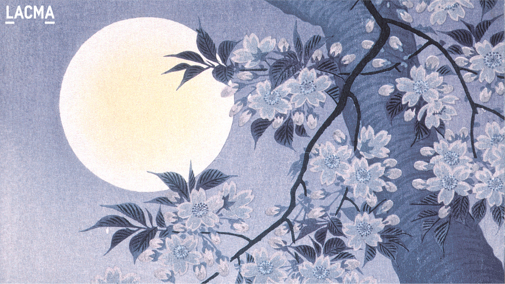 Blossoming Cherry on a Moonlit Night by Ohara Shōson (Japan, 1877-1945)