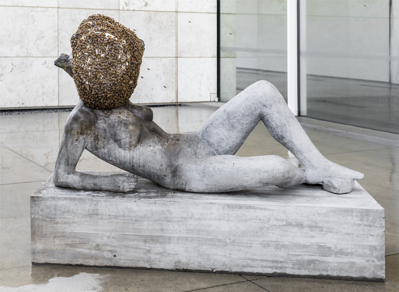 Installation Photograph, ​​Pierre Huyghe, LACMA